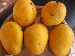 The Most common type of jamaican mango